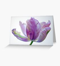 Raw Silk Greeting Card