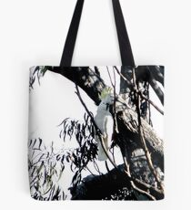 wild sulfur crested cockatoo Tote Bag