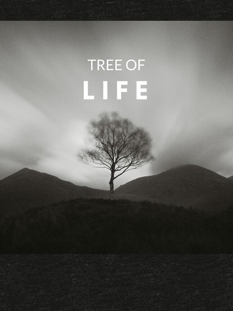 «Arbre de la vie» par patricemestari