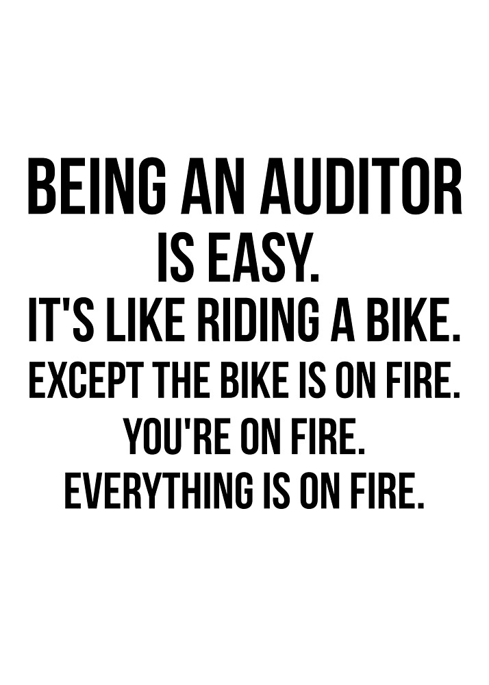 Being An Auditor by Renware