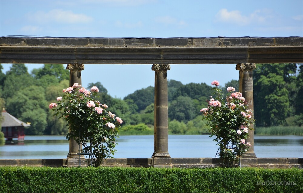 Italian garden views  by marxbrothers