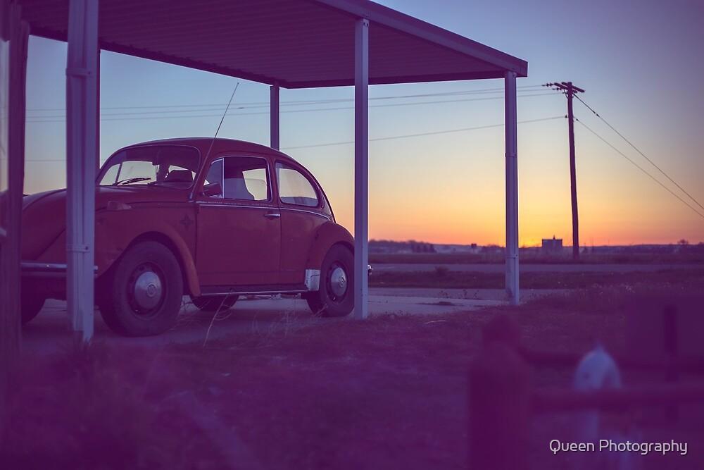 Slug Bug! by Queen Photography