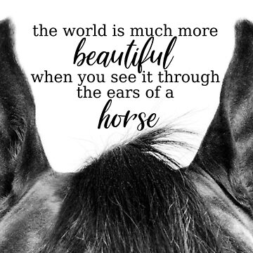 Equestrian Quote by syriana94