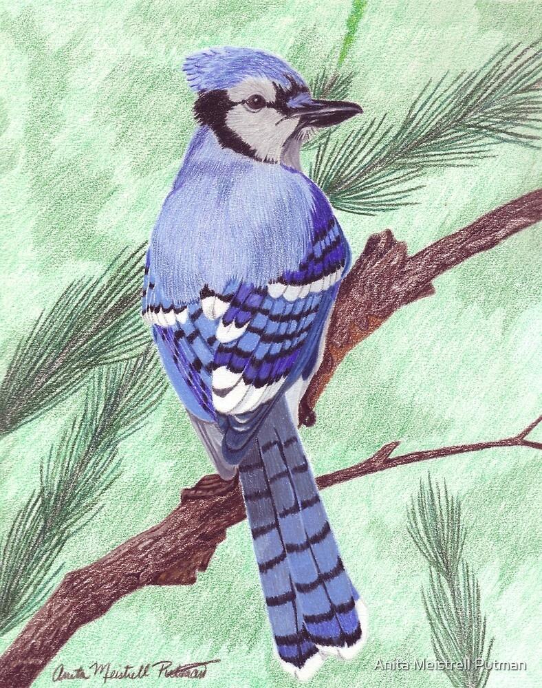 True Blue by Anita Putman