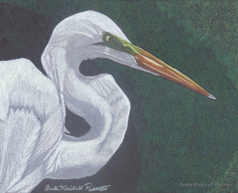 Profile in White by Anita Putman