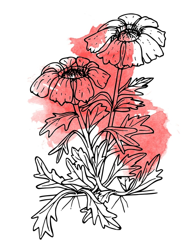 Red Poppies by Victoria  Randall