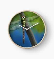 Green Darner Dragonfly Clock
