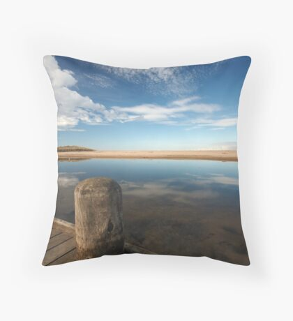 Barham River ~ Apollo Bay Throw Pillow
