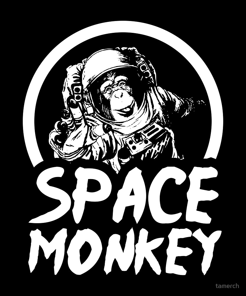 Astronaut Space Monkey by tamerch