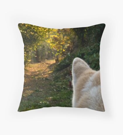 The path and the onlooker Throw Pillow