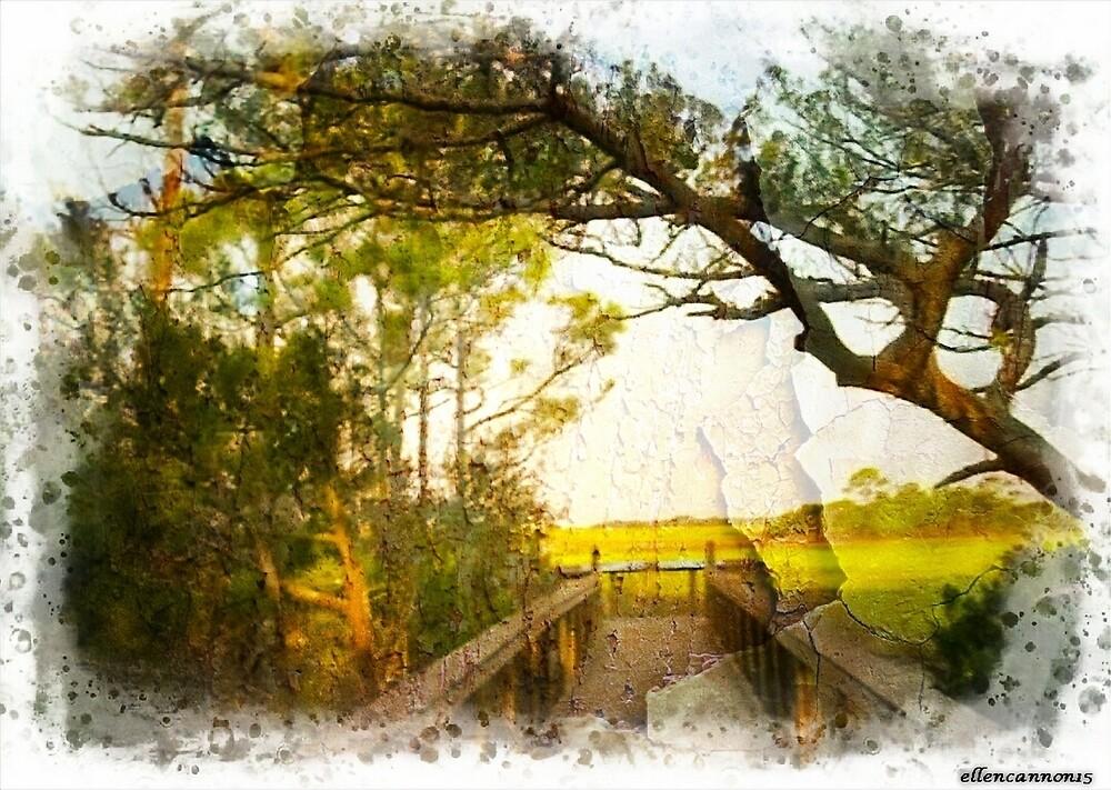 Summer Stroll by ecannon11