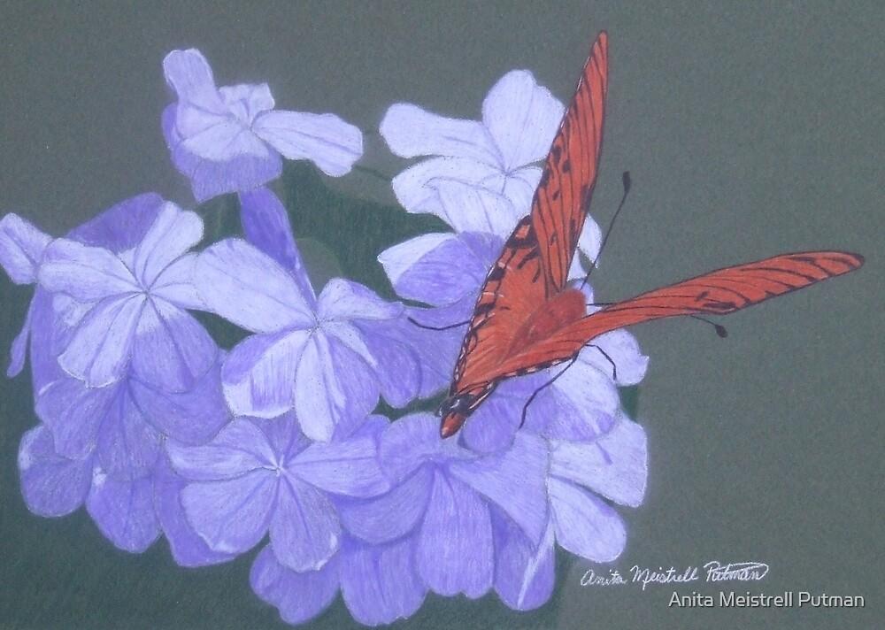 Late Bloomers by Anita Putman