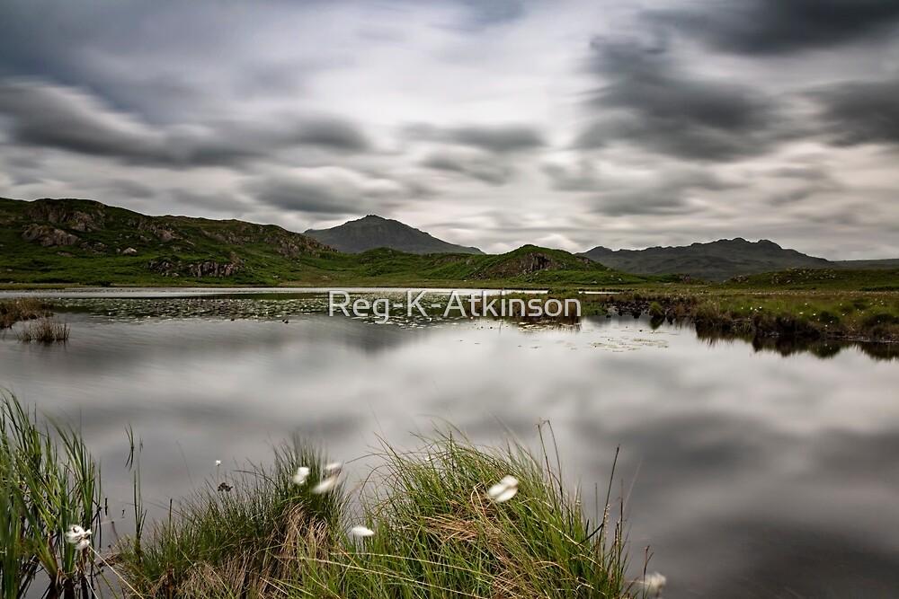 Eel Tarn - Eskdale by Reg-K-Atkinson