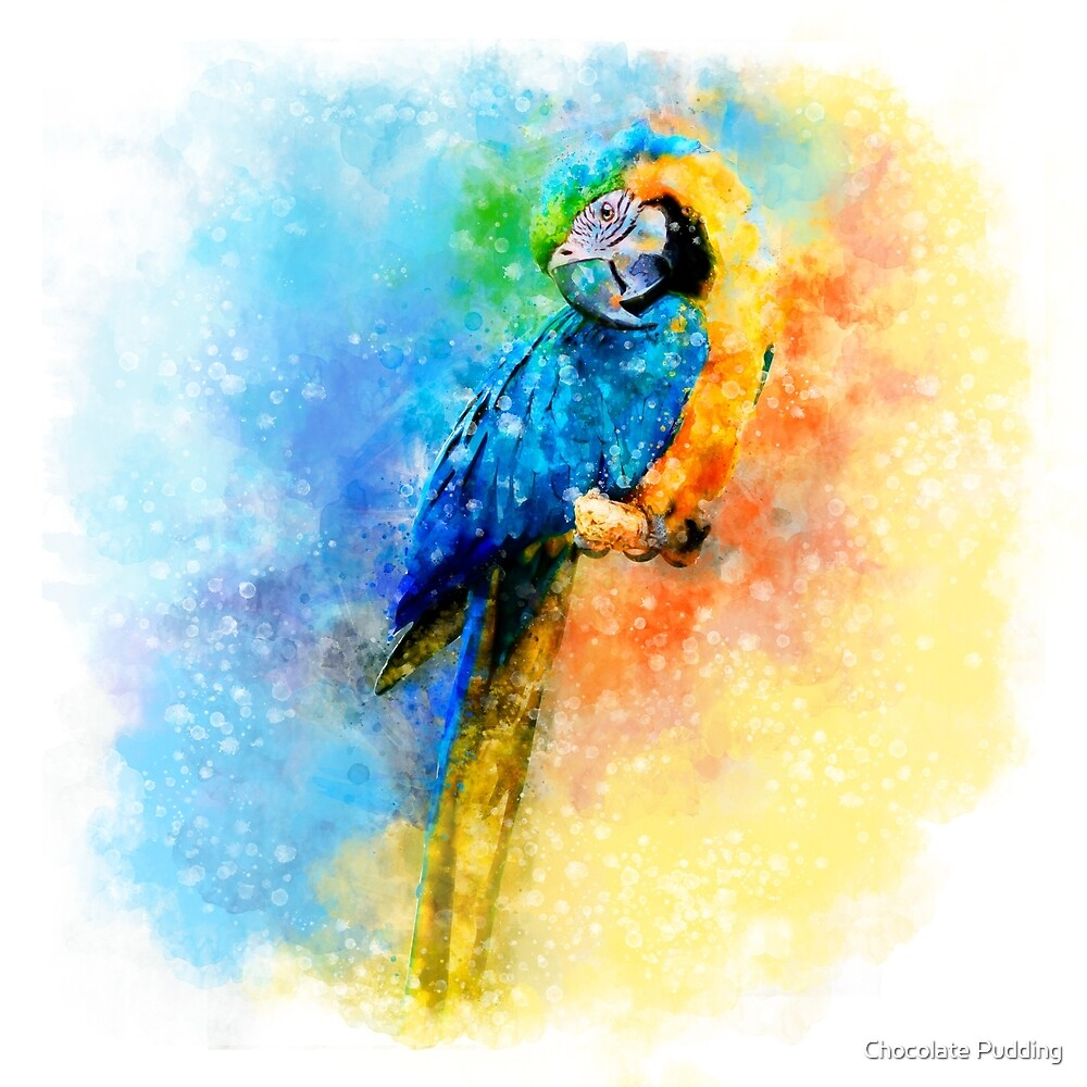 Parrot Watercolor by Chocolate Pudding