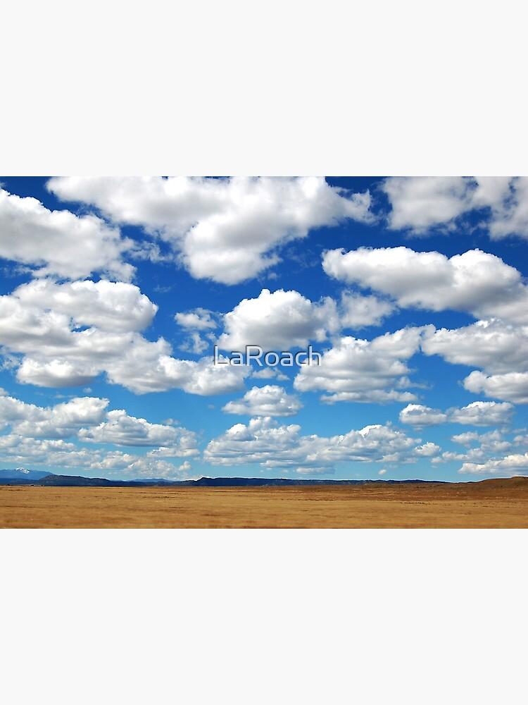 Big Sky Clouds by LaRoach