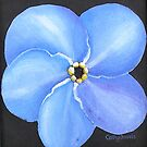 Forget-me-Not 3 by cathy savels