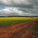 The Approaching Storm, New Norcia, Western Australia by Adrian Paul