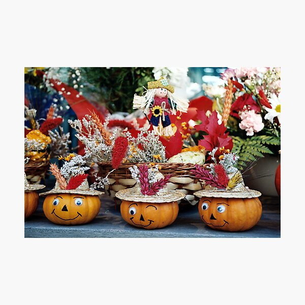 Did You Call Me A Country Bumpkin - Or Country Pumpkin? Photographic Print