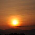 Here comes the sun king by Daniela Cifarelli