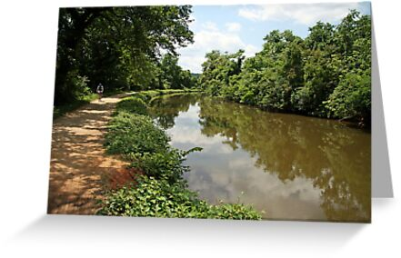 The C&O Canal by Cora Wandel
