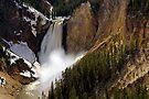 Lower Falls - Yellowstone River by Stephen Beattie