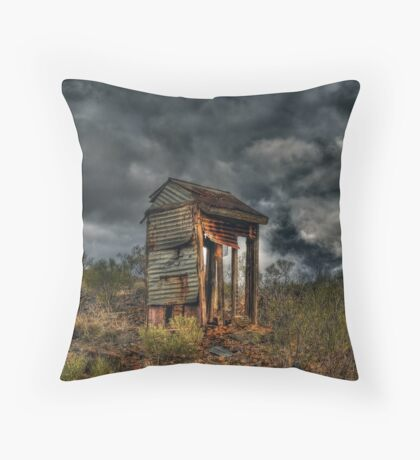 Dilapidated Dunny on the Hill Throw Pillow