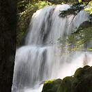 Erma Bell Falls by Chappy