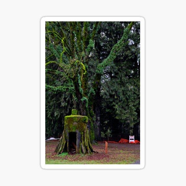 Mossy Tree Sticker