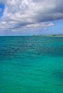 Coastal Anegada by DARRIN ALDRIDGE