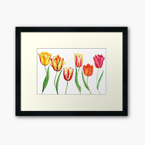 colorful tulips flower watercolor painting  Framed Art Print