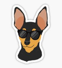 Cool Miniature Pinscher Sticker