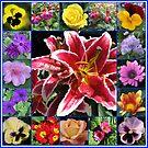 Auswahl an Sommerblumen Collage von BlueMoonRose
