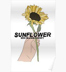 Rex Orange County Sunflower Poster
