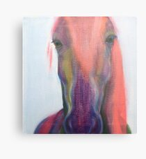 The ghost of a horse Metal Print