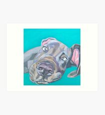 Very friendly grey dog Art Print