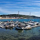 Outer Harbour - Lyme Regis by Susie Peek