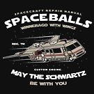 May The Swartz Be With You Movie Spoof by Wild Burro