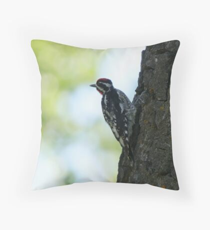 Yellow Bellied Sapsucker Throw Pillow