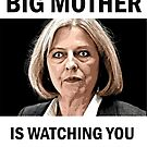 Big Mother is watching you. by Smallbrainfield