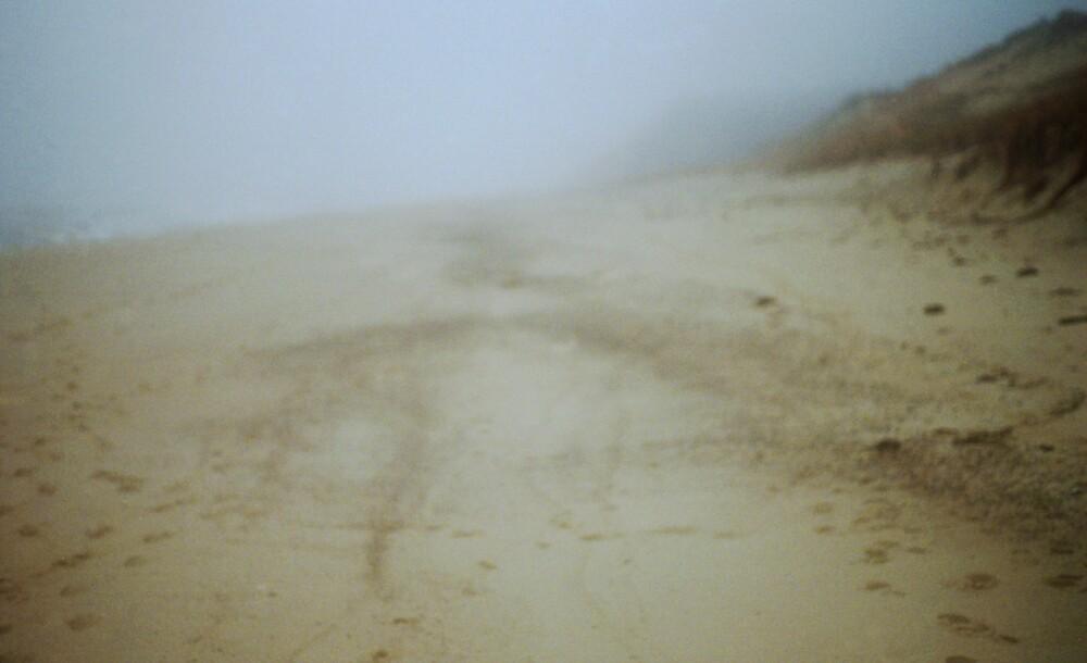 Ballston Beach by dylangould