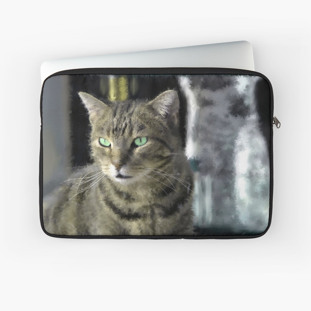 Window Shopping Laptop Sleeve