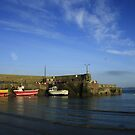 Loughshinny Cove Harbour by Martina Fagan