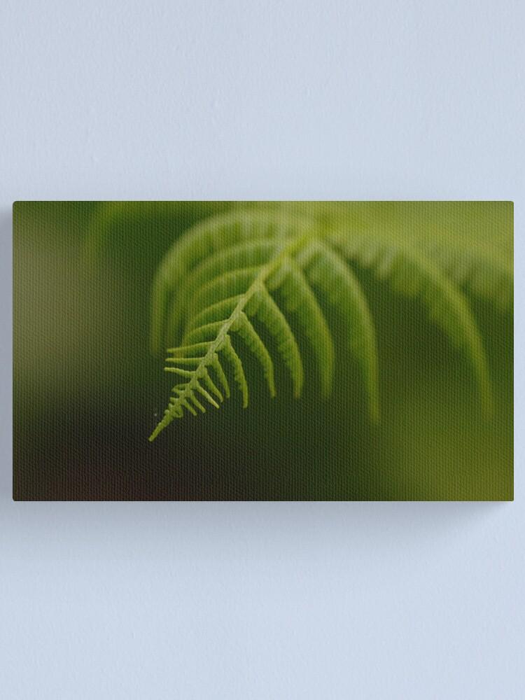 Alternate view of Fern Leaf Canvas Print