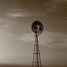 Windmill at dawn , Smithton , Tasmania , Australia by phillip wise
