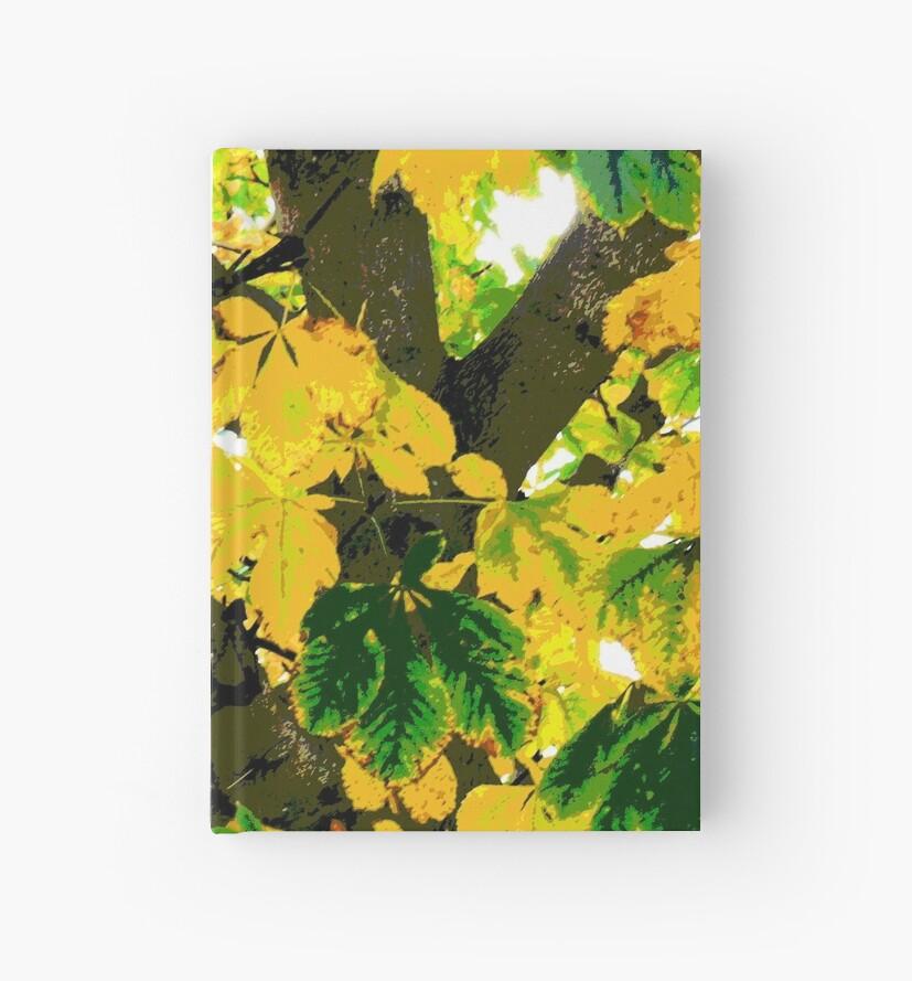 autumn chestnut by tomdonald