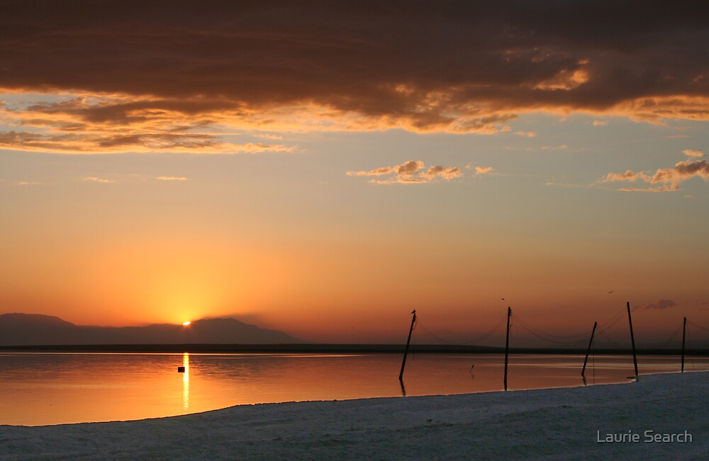 Salton Sea Sunset by Laurie Search