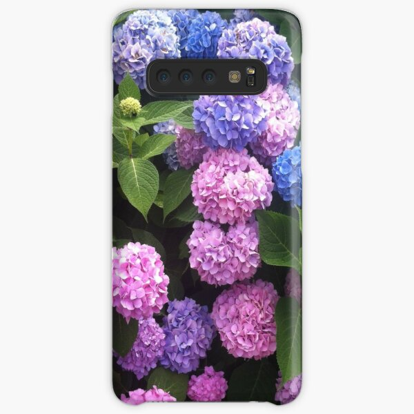 Cape Cod Pink and Blue Hydrangeas Samsung Galaxy Snap Case
