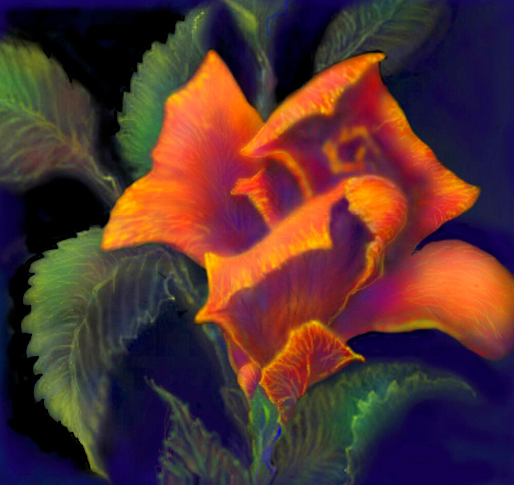 'Orange Delight' Digital Rose Painting, Baroque Roses by luvapples downunder/ Norval Arbogast