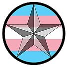 Lone Star Trans Pride! by Sun Dog Montana