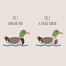 Know Your Birds VI by Teo Zirinis